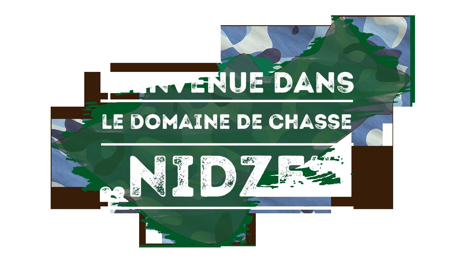 Hunting Area Nidze