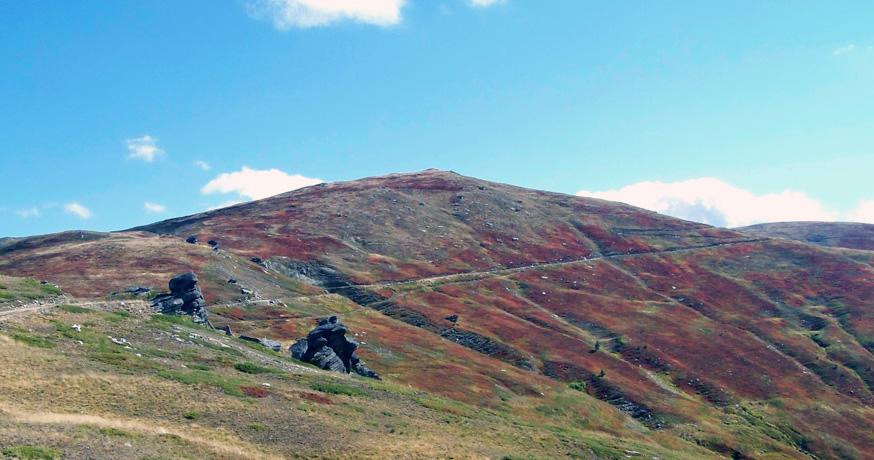 Hunting Area Nidze - Природни богатства и културно наследство 2